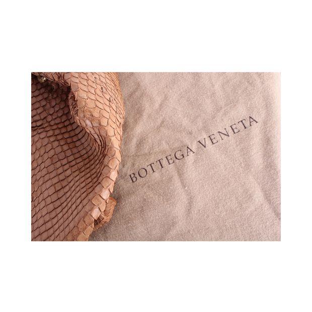 1c6cde665ac Limited Edition Duette Python Bag by BOTTEGA VENETA   StyleTribute.com